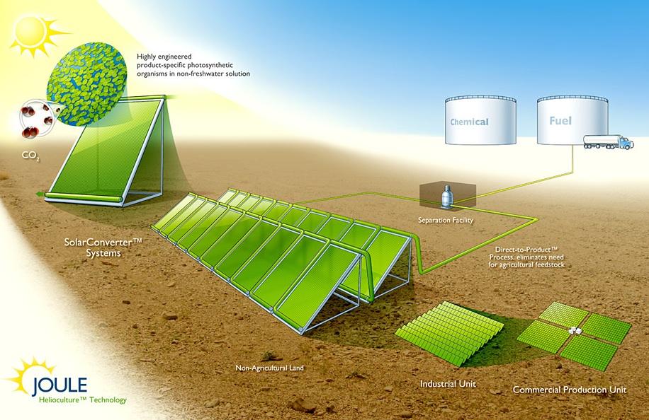 Joule Raises $30M for Solar Biofuel Hybrid