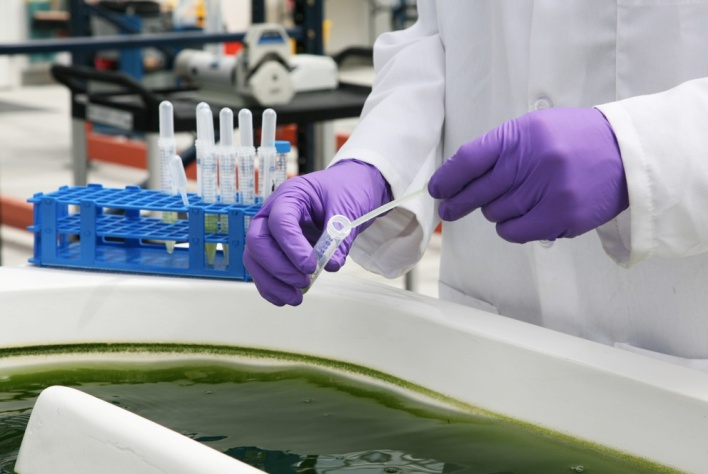 PHOTOS: Exxon, Synthetic Genomics Open Algae Test Facility