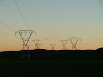 Smart Grid Networks: The Public vs Private Debate