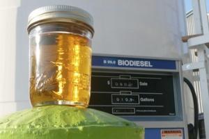 Dogpatch Biofuels