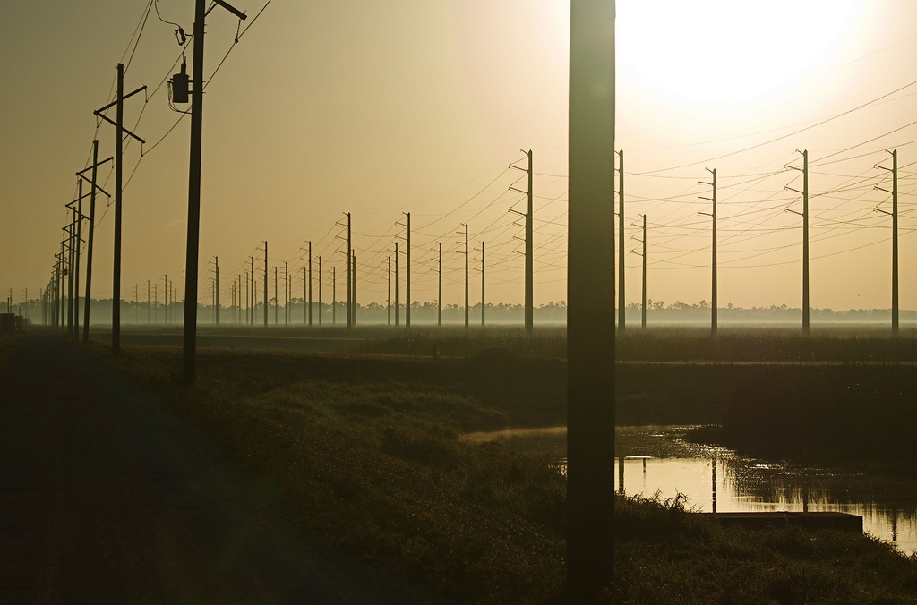 powergrid19