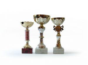 401203_trophy