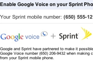 google-voice-sprint