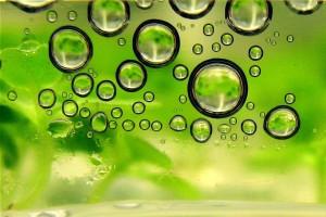 Biofuel_bubbles
