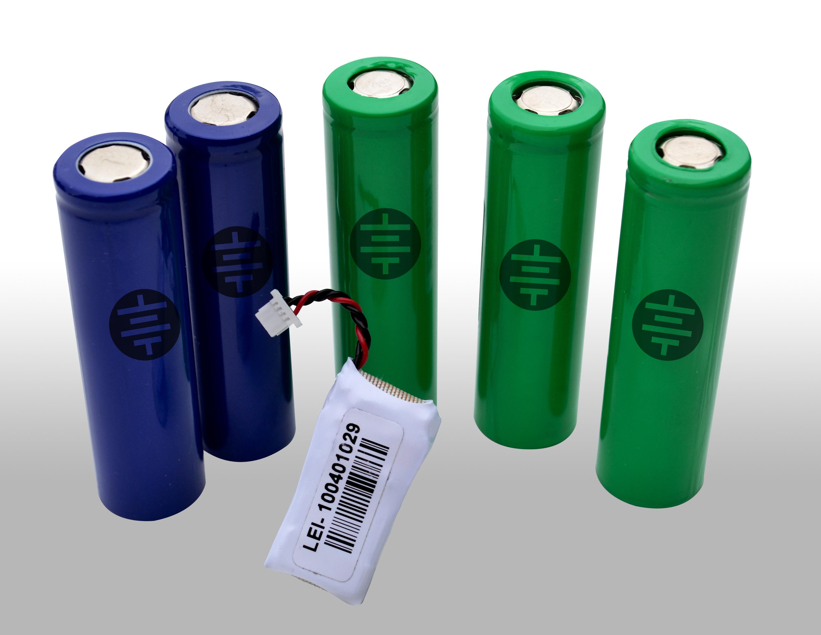 Leyden Energy lithium ion batteries, image courtesy of Leyden Energy.