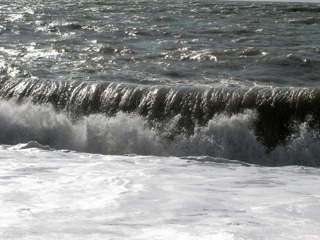 seawater1