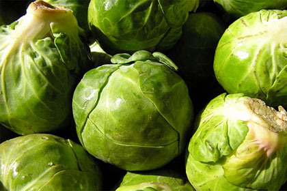 Brussels sprouts, under CC license by Flickr user baha1210