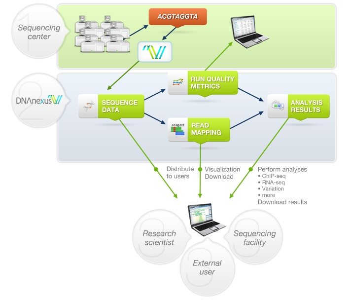 DNAnexus's cloud-based architecture