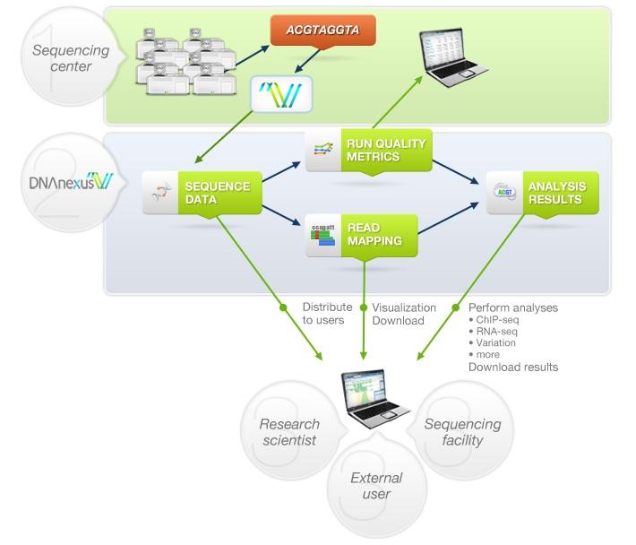 DNAnexus's cloud-based architecture