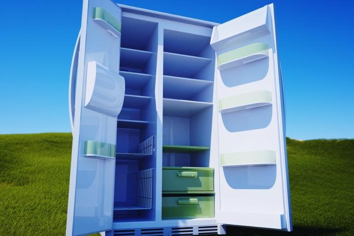 fridgethumb
