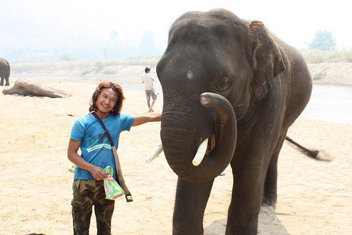 friends with elephant