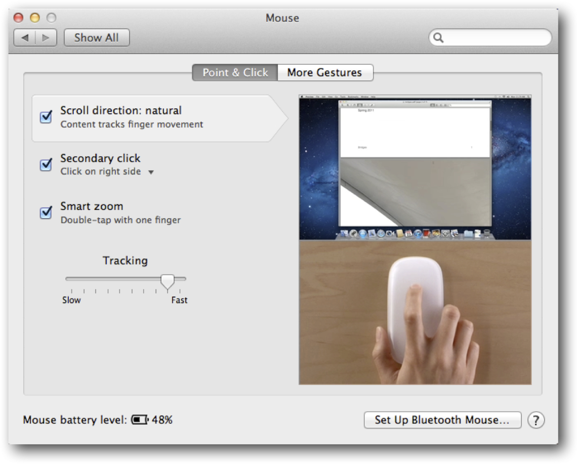 Mouse System Preferences