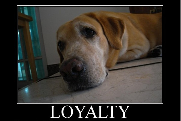 loyalty-quote