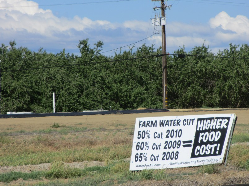 Central Valley has a long history as a big battleground over water -- how much should go to farms and towns and how much for the wildlife.