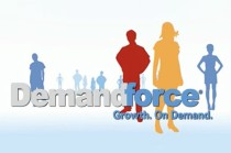 demandforce_about_video