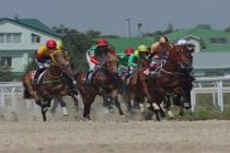 horsemen photo1