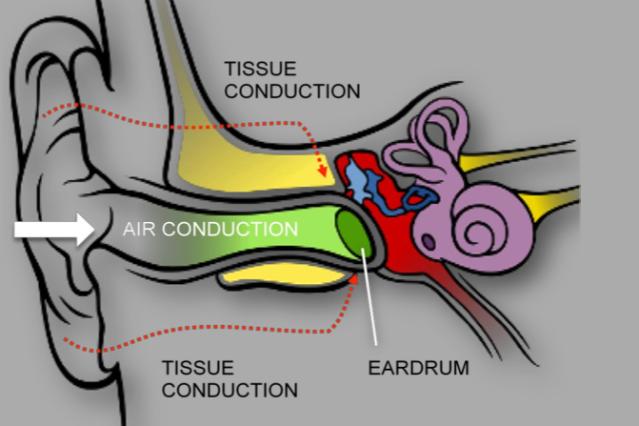 Kyocera ear ceramic transducer