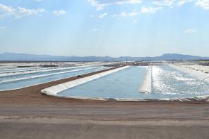 Sapphire Energy New Mexico