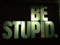 Be Stupid_ Some rights reserved by Michiel020