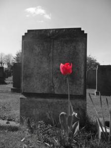 Grave, funeral, death, die