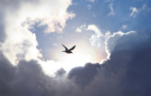 Heaven, sky