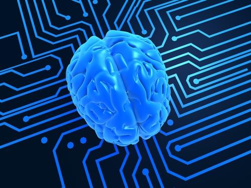 Brain on chip