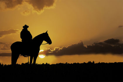 Riding into the sunset: Shutterstock/outdoorsman