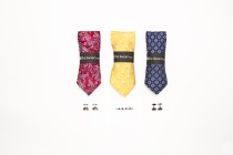 Tie Society logo ties men's fashion startup