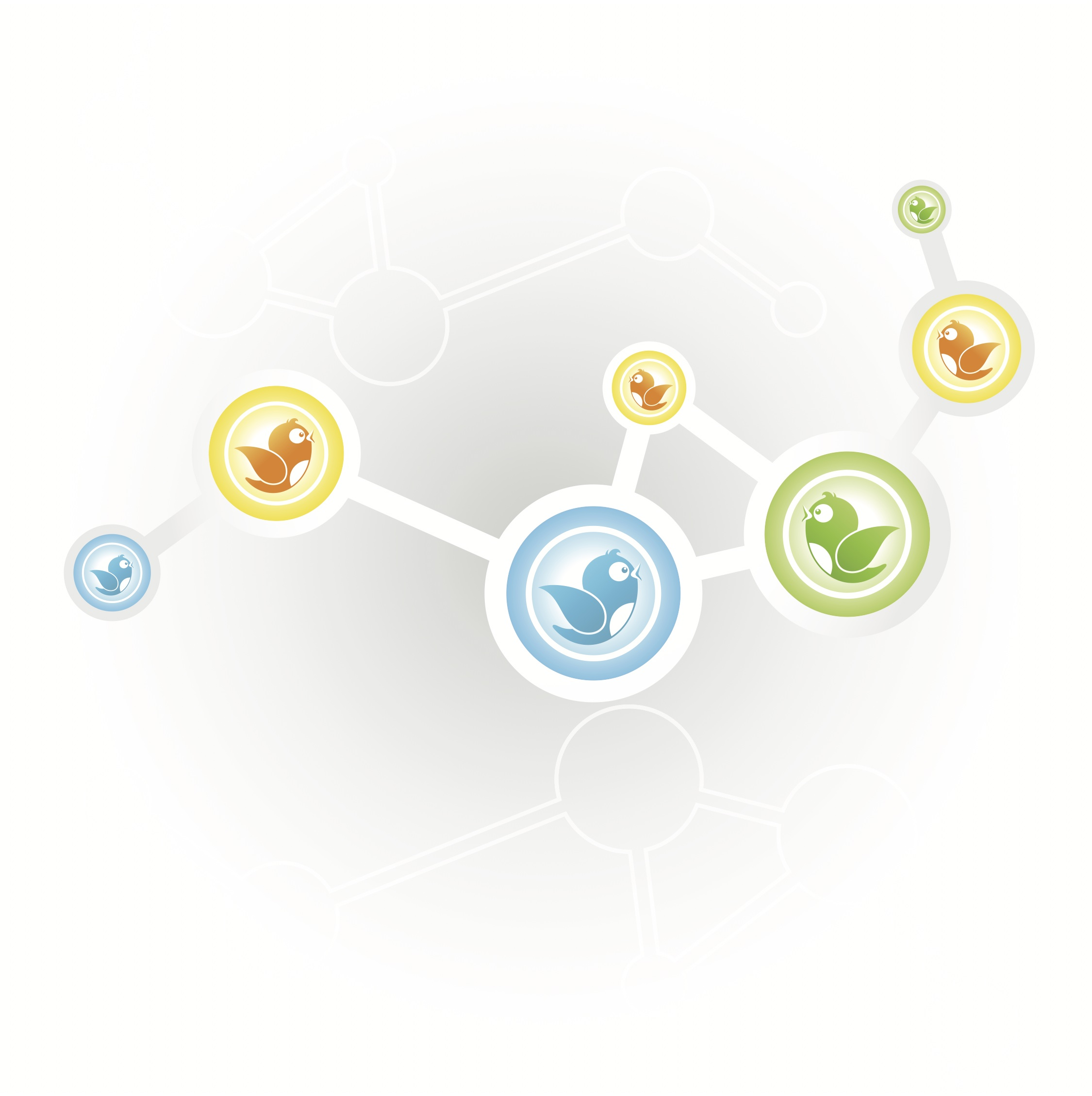 twitter network data
