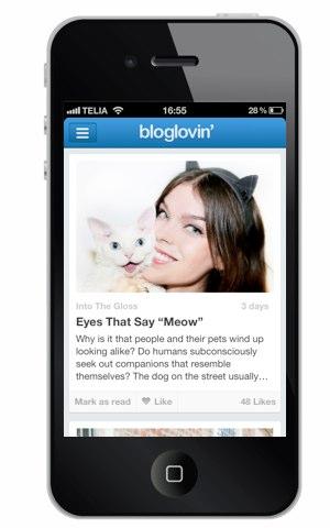 bloglovin 1