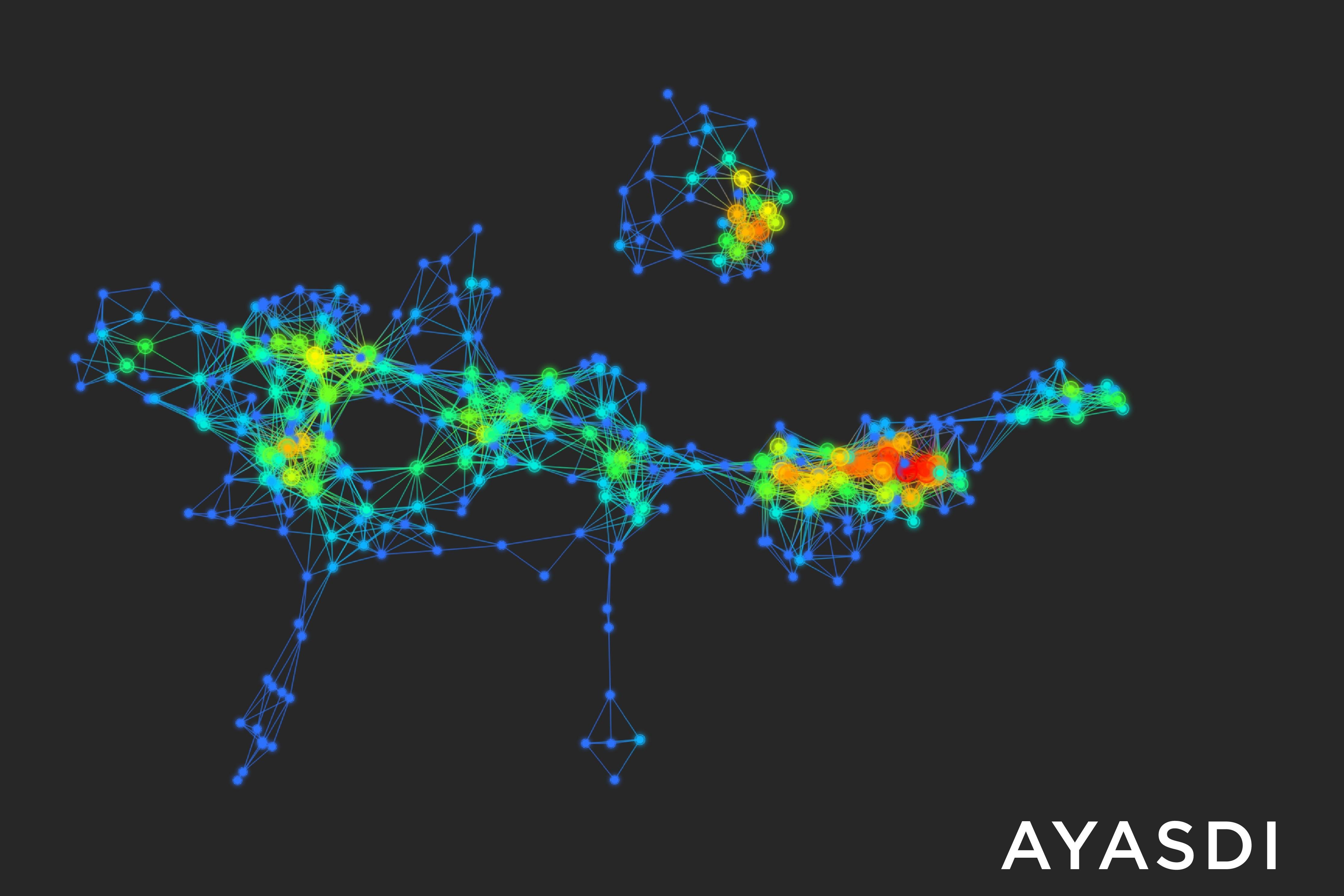 One of Ayasdi's graph-like data maps
