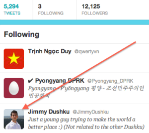 Screen shot from North Korea Twitter