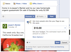 Facebook pay to promote post newsfeed advertising users