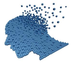 memory brain