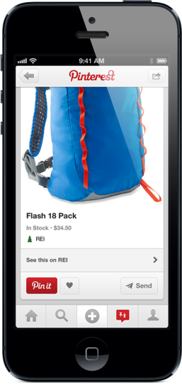Pinterest REI backpack pin product page