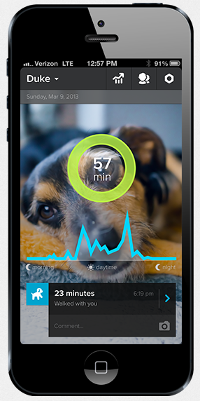 Whistle quantified dog smartphone app