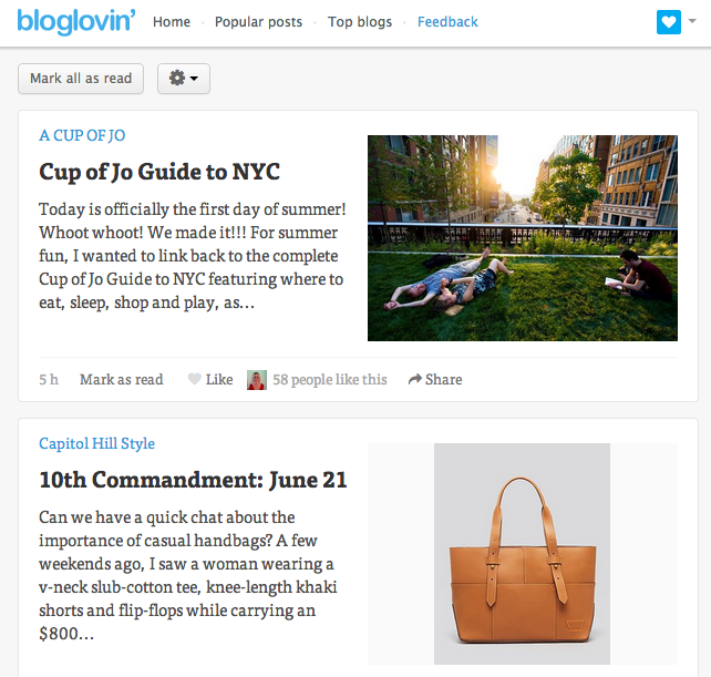 Bloglovin screenshot desktop image view