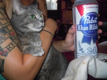 hipster pabst