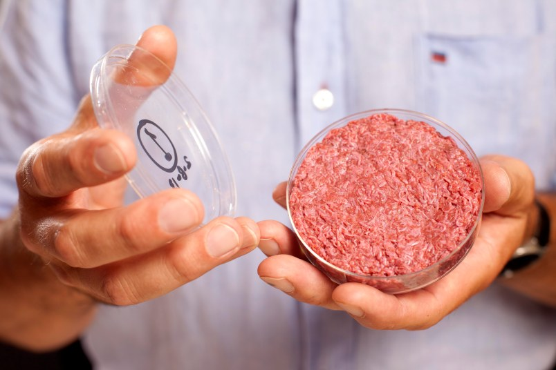 Cultured Beef hamburger patty