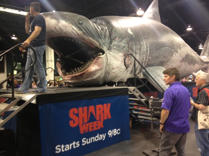 You could get your photo taken in the jaws of Sharkzilla. I tragically missed the opportunity.
