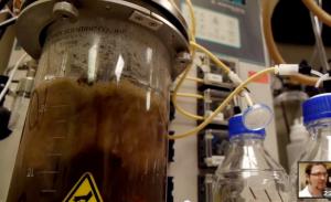Biobutanol manufacturing
