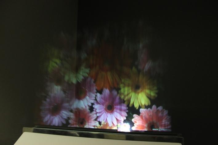 displair flowers