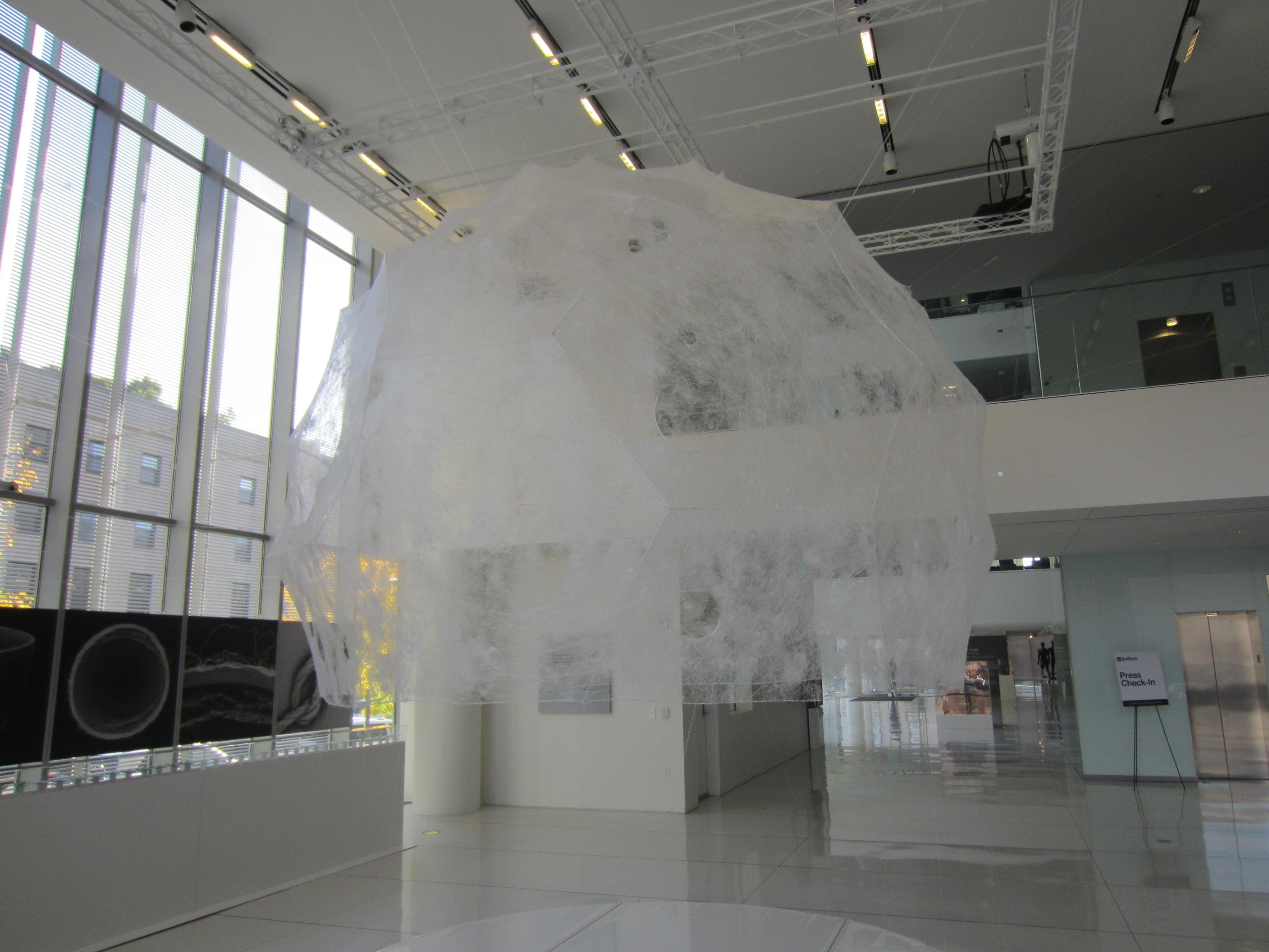 Silk Road at MIT Media Lab