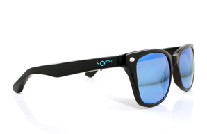Ion Glasses