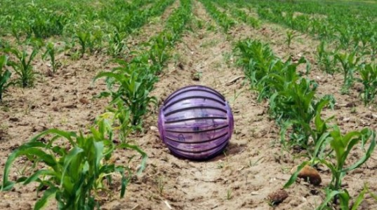 A team from the Robotics and Cybernetics Research Group (Technical University of Madrid) has built an experimental farm robot they dubbed the Rosphere.