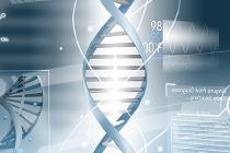 LM-Genomics-210x140