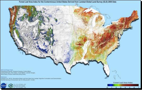 nasa_nex_landsat_us_2005_forest_leaf_area_1