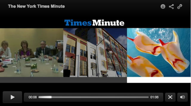 New York Times minute screenshot