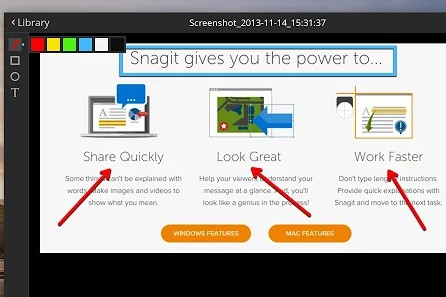 snagit for chrome