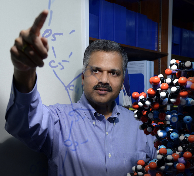 Ajay Royyuru, director of IBM's Computational Biology Center